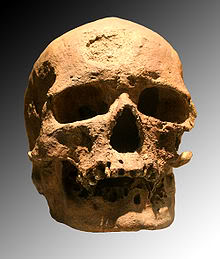 CroMagSkull