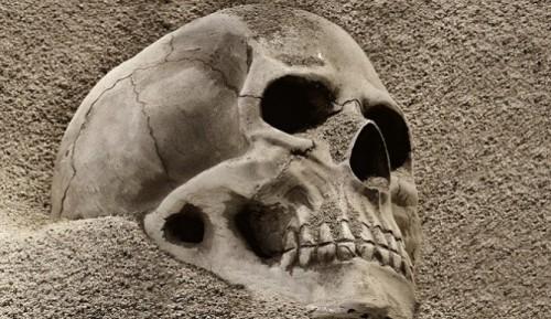 Polish Skulls