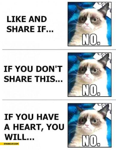 grumpy-cat-like-and-share-if-you-dont-share-if-you-have-a-heart-no